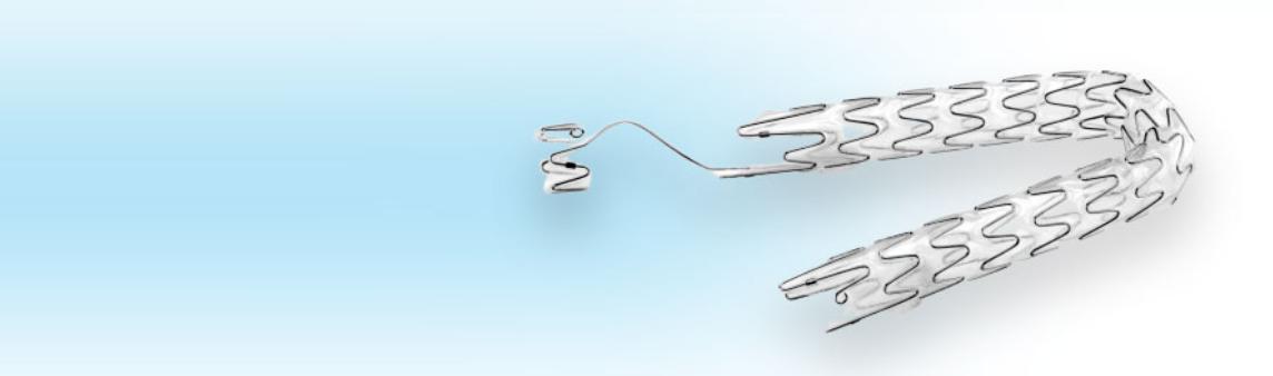 stent ureteral
